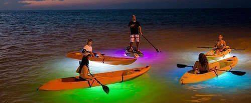 Kayak Rentals in Panaama City Beach